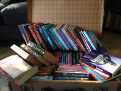 Travelling bookcase