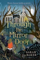 through-the-mirror-door-cover