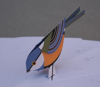 bird_pop_820x