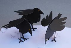 black_bird_pop_820x
